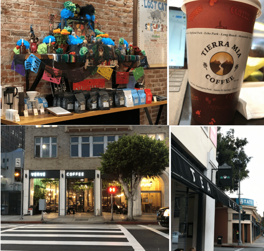 Four cozy study spots near campus, detailing Tierra Mia Coffee, Starbucks coffee, tea house and Copa Vida.