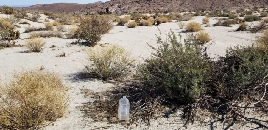 A journey through the desert and back to my childhood