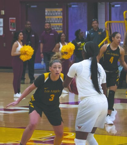Golden Eagles Unable to Break Losing Streak