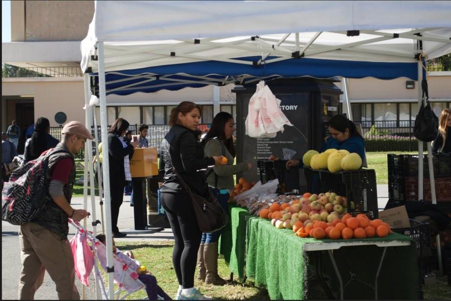 Farmers Market attendees shop for groceries in February 2016.