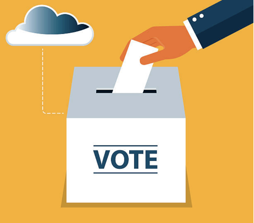 A picture of a voter ballot design.