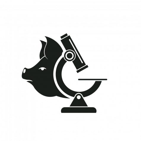 Pig wishing a google sign and a microscope, logo.