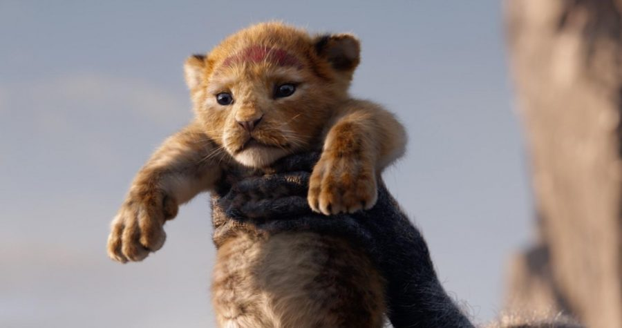 Simba%2C+voiced+by+Donald+Glover+in+the+live-action+The+Lion+King+film