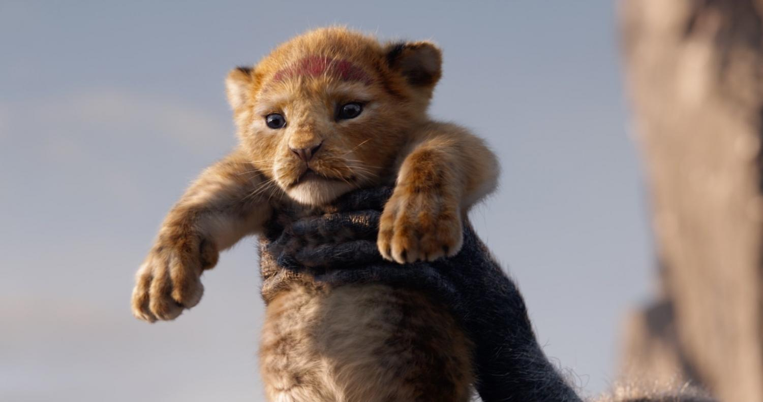 Simba, voiced by Donald Glover in the live-action The Lion King film