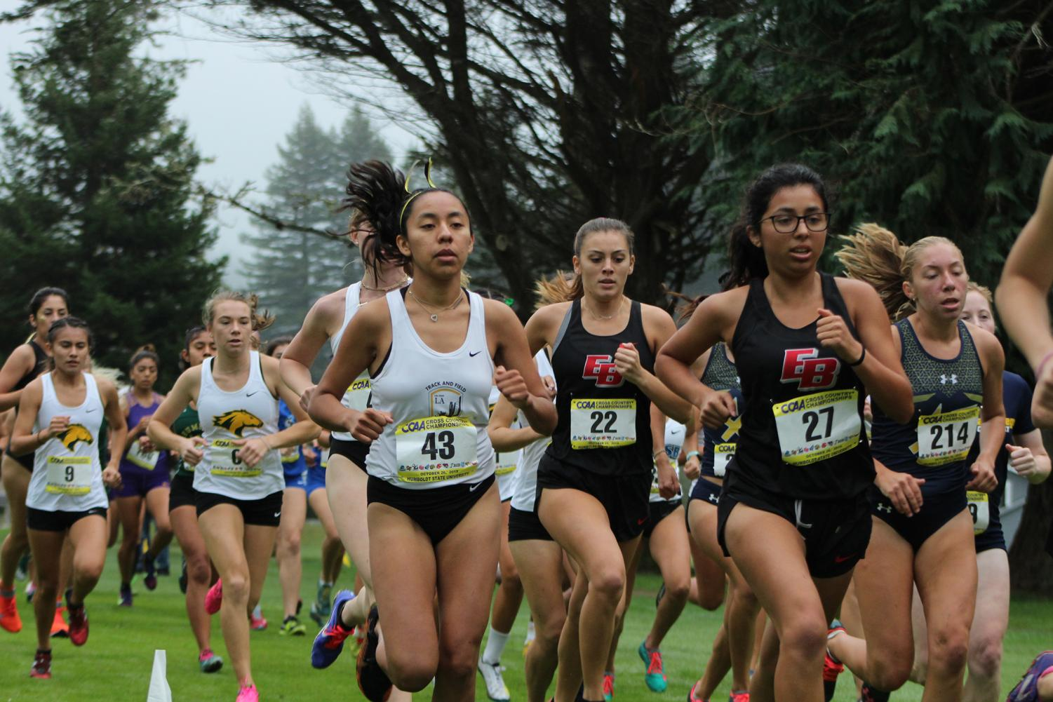 Cal State LA women's cross country placed 8th place overall this past Saturday with 236 points.