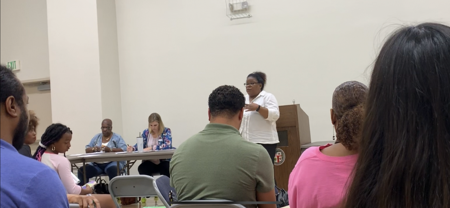 Kathy Guyton advocating for the creation of Cannabis Comittees, at a Recent South LA Alliance of Neighborhood Councils Meeting.