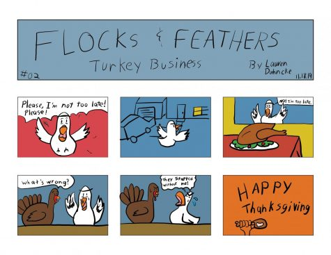 Flocks and Feathers