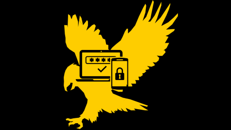 Illustration of an eagle with a security lock